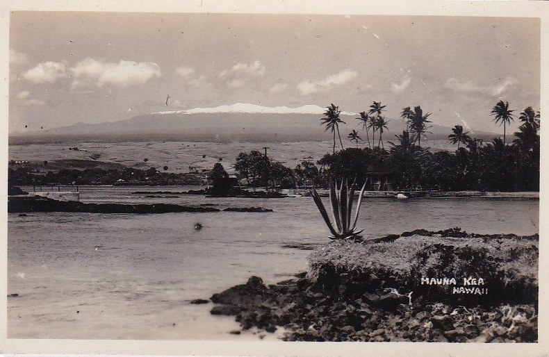 Hawaiian Missionaries: stamps that lead to crime